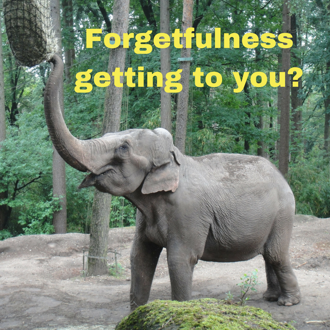 Forgetfulness getting to you?