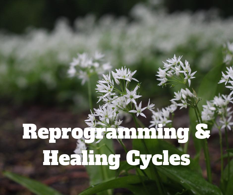 Reprogramming & Healing Cycles